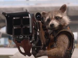 guardians raccoon