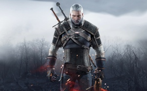 witcher 3 wh
